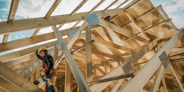 shutterstock_1533114317.verkleind